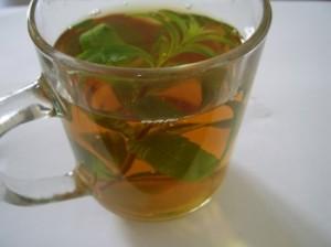 mint_tea_199663