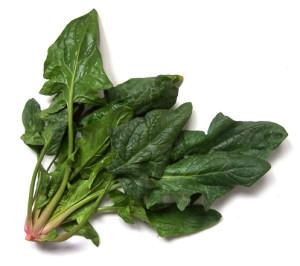 spinach-2-1530354
